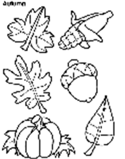 crayola coloring pages autumn leaves fall leaves crayola com au