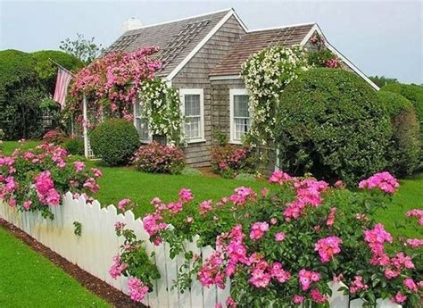 nantucket cottage flowers