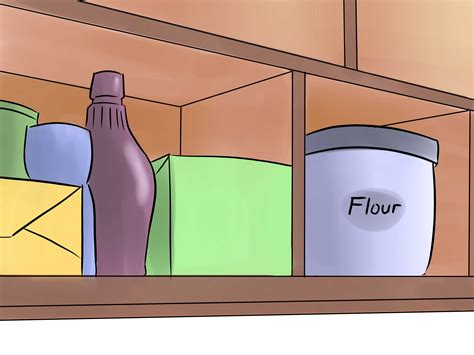 How To Get Rid Of Weevils In The Pantry by How To Get Rid Of Weevils Flour Bugs 9 Steps With