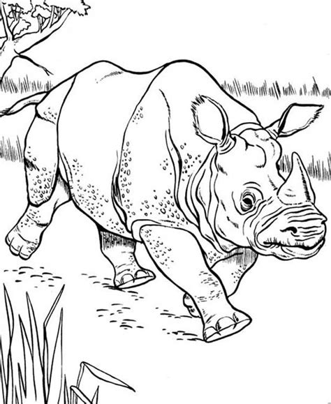 rhino coloring page marvel rhino coloring pages coloring pages