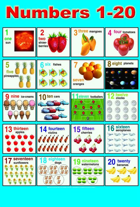 printable number chart 1 to 20 laminated numbers 1 20 children learning educational