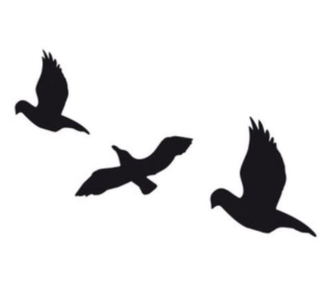 tris prior bird tatto overlay tattoo pinterest tris