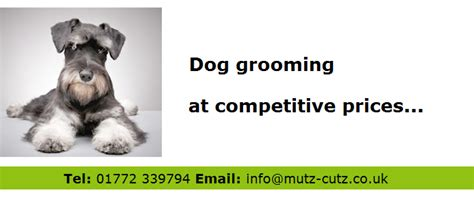 dogs 2 price grooming prices at mutz cutz all breeds welcome