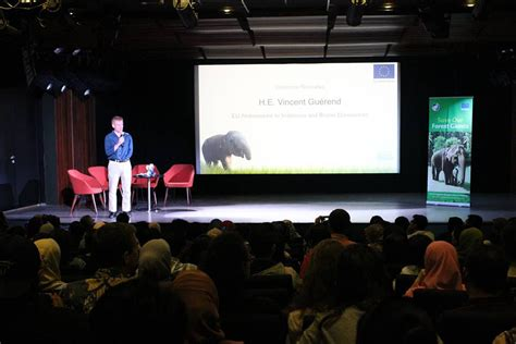 film dokumenter gajah save our forest giants