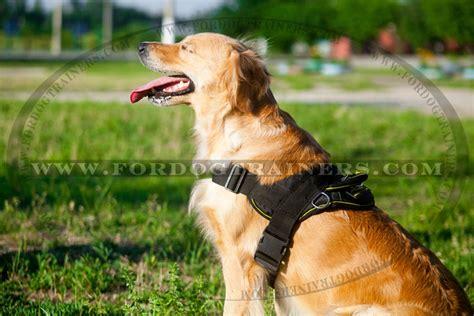 golden retriever harness buy adjustable harness waterproof tracking harness