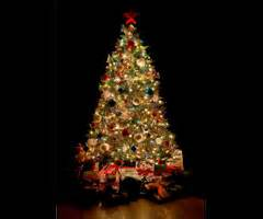 all about the christmas tree pagan origins christian