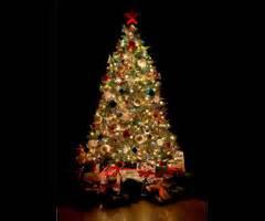 the origin of the christmas tree doityourself com