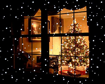 existence   natural environment december