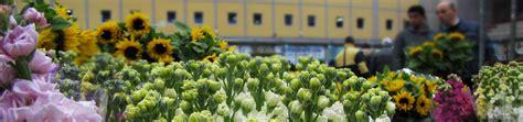 mercato fiori terlizzi terlizzi mercato dei fiori terlizzi