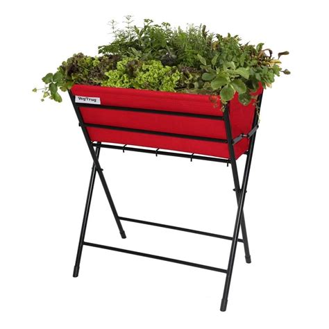 vaso per pianta vasi per piante ricanti homehome