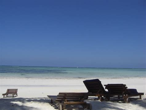 turisti per caso zanzibar zanzibar kiwengwa isola di zanzibar tanzania viaggi