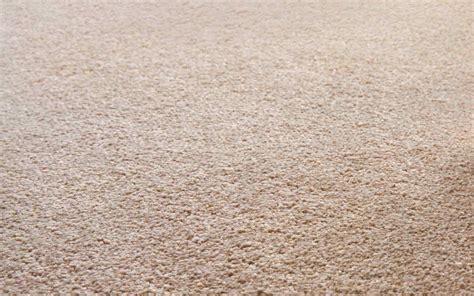 teppich naturmaterial teppichboden in m 252 nchen bodenbel 228 ge warmuth
