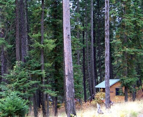 Idaho State Parks Cabins by 17 Best Images About Idaho State Parks On