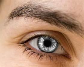 silver eye by hyper child on deviantart