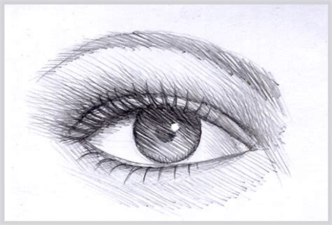 Drawing In Pencil Step By Step by How To Draw That Looks Realistic With Pencil Step By