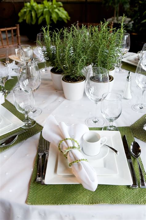 best 25 potted plant centerpieces ideas on