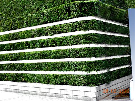 Agro Wall Vertical Garden Planting System Agro Wall Wall Garden System