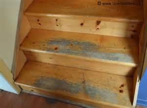 charming Comment Renover Un Escalier En Bois #1: escalier-bois-franc.jpg