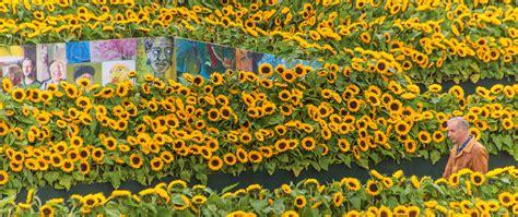 amsterdam museum flowers flower labyrinth at van gogh museum amsterdam photo club