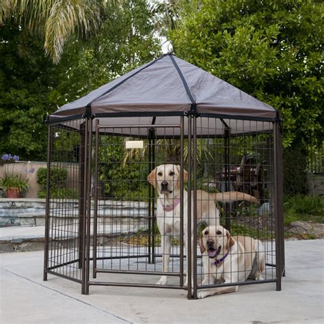 pet gazebo advantek original pet gazebo medium kennels at hayneedle
