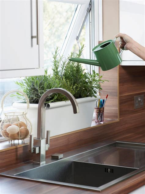 plants in the kitchen how to plant a kitchen herb garden hgtv