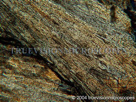 Wollastonite Thin Section 28 Images Wollastonite Skarn