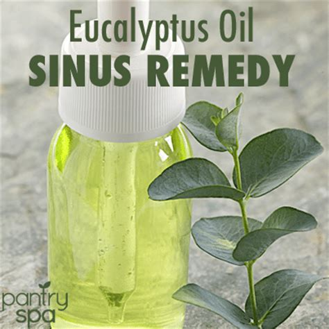 14 sinus infection home remedies for blocked sinus