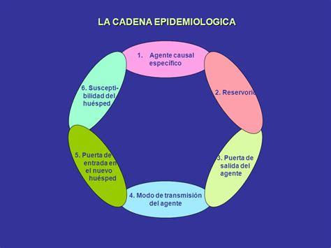 cadena epidemiologica la rabia determinantes de la salud ppt video online descargar