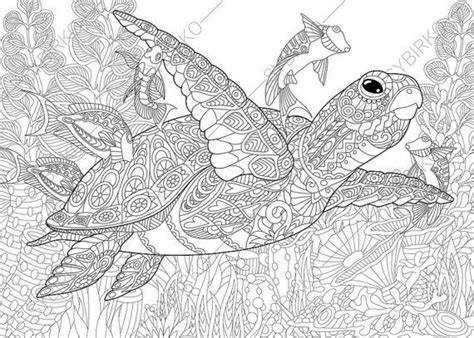 hard turtle coloring pages 153 best images about coloring pages on pinterest