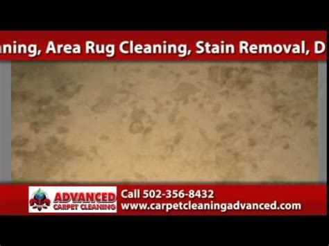 advanced carpet and upholstery cleaning louisville tile and grout cleaning advanced carpet