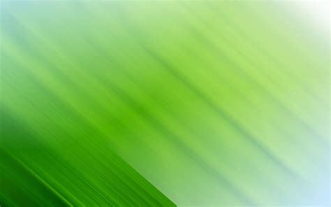 free green 4k green wallpapers high quality download free