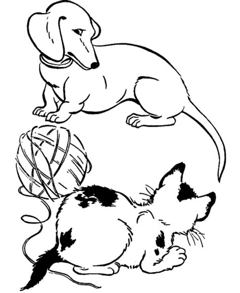 coloring page of a dog and cat dog and cat coloring page image clipart images grig3 org