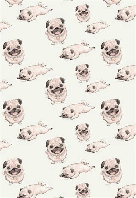 cute dog wallpapers wallpaper wallpapers pinterest dog dog tumblr wallpaper google search animals pinterest