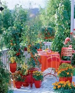 coltivazione a terrazza coltivare in terrazzo fare giardinaggio coltivare in