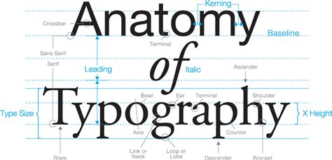 typography em the anatomy of type typostrate