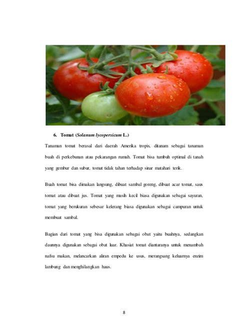 referensi apotek hidup daftar tanaman herbal apotek hidup
