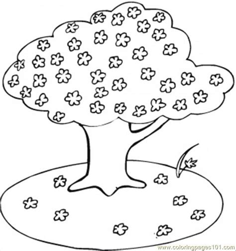 coloring page cherry tree free coloring pages of a cherry tree