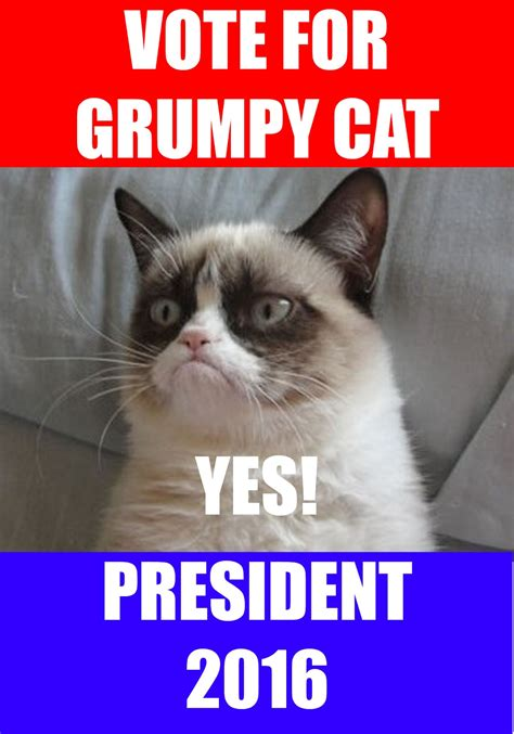 Grumpy Cat Yes Meme - the three rs rants raves and occasional reflections