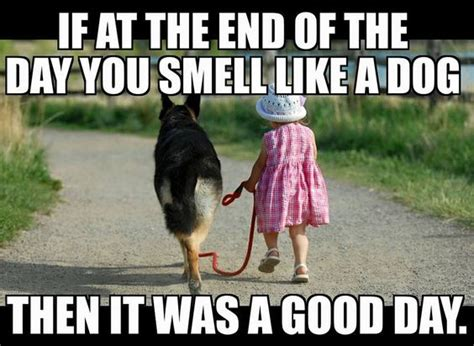 help my house smells like dog if at the end of the day you smell like a dog it was a good day rescue doglove