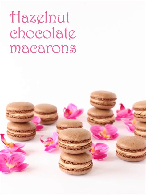 printable macaron recipes hazelnut chocolate macarons plus printable template