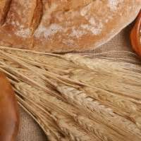 whole grains or bad whole grains or bad nutrition studies