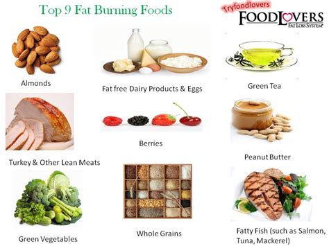 healthy fats help build these and healthy foods helps in burning in
