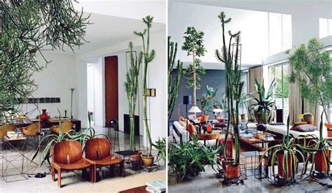 Small Living Room Decorating Ideas 10 wonderful rooms with urban jungle home design and