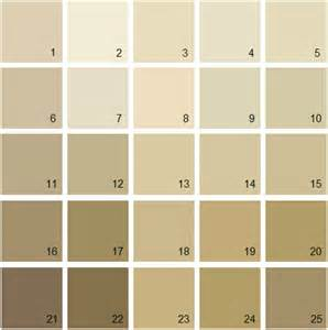 benjamin moore paint colors gallery for gt tan paint color swatch