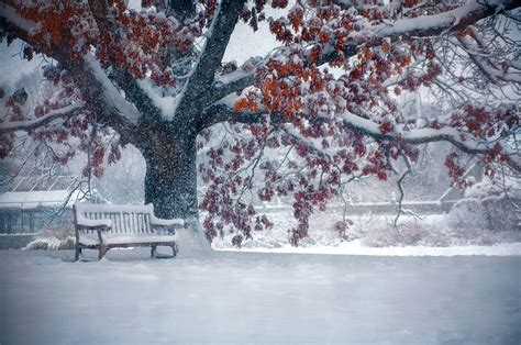 park bench in winter full hd wallpaper and background