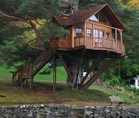 tree house homes amazing tree house hits all