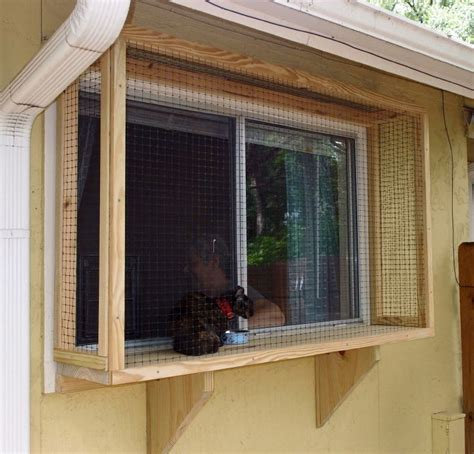 window box for cats 171 best cat houses shelters images on