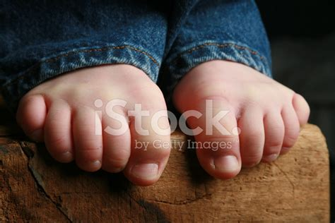 Tree Swing Chair Little Boys Legs And Feet Stock Photos Freeimages Com