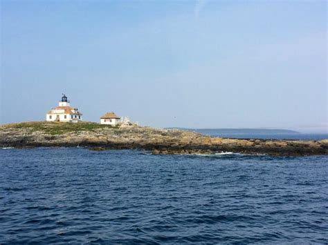 boat tour bar harbor egg island picture of bar harbor boat tours bar harbor