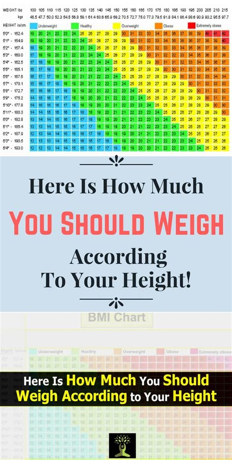 how much should i tip for a tattoo here is how much you should weigh according to your height